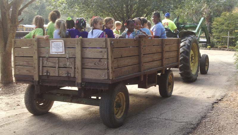 PHOTO SUBMITTED /  Students from North Pike Middle School, shown here aboard the corn wagon, had first-to-the-patch honors this season at Swan Creek Farms.