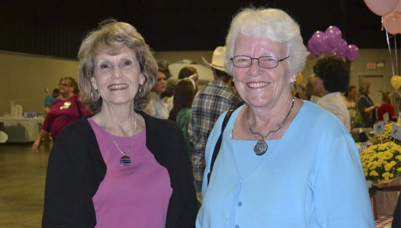 Katherine Bumgarner (from left) and Norma Hill pause from browsing the silent auction items.