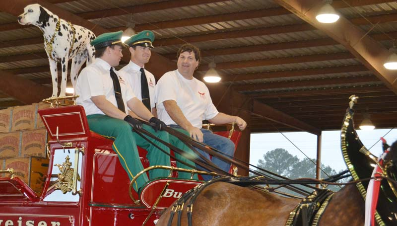 Josh Smith (right) of Brookhaven gets a ride aboard the Budweiser Clydesdales' wagon Sunday afternoon with Brewer the Dalmation and Budweiser East Coast Hitch Supervisor Dave Thomas and Eric Soto.