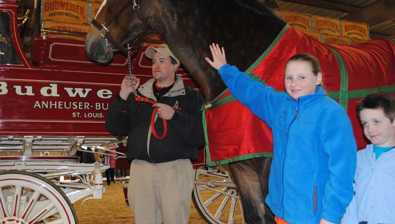 In another part of the stall barn, Braden and Drew Barnett (from left) pose for their special picture with a Clydesdale. Lincoln Civic Center director Quinn Jordan said about 1,000 people turned out for Monday afternoon's event.