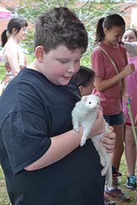 Baxter Azlin makes friends with a white ferret, one of the many exotic animals on display in Percy King's menagerie.