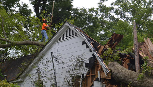 """Wayne Smith Tree Service utilized a 50-ton crane, two Bobcat dozers and a five-man team to remove the tree, which had imbedded itself into the roof and interior of the house. At upper right, Smith grabs onto the end of the crane's lift chain and prepares to hook up a section of the tree. The crane removed the large cut-off sections one by one (lower right) throughout the morning. Smith's crew worked on the tree removal project from 8 a.m. Tuesday until 5 p.m. and started back this morning at 8 a.m. to finish the cleanup. Smith said local contractor, Hugh Mathis, was going to get a tarpaulin placed over the roof today. The house, which was the home of the late Wylma Mitchell, was owned by her sons, Ken and Hugh Mitchell. No one was in the house at the time of the storm. Johnny Lynch of Brookhaven said he plans to work with the family and try to save the house. Smith said the crane was brought in from Jackson since there are no longer any larger cranes like it available locally. """"There's no way to lift it off without a crane,"""" he said, due to the weight of the tree and the fact that it was lying on the roof. Smith said this was not the largest tree he's had to remove, but it was one of the larger ones."""