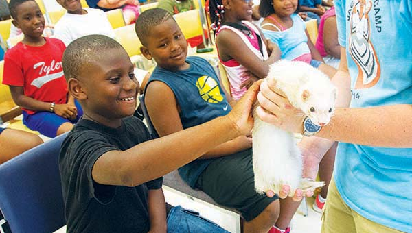 DAILY LEADER / KATIE WILLIAMSON / The Jackson ZooMobile filled with live animals visited Brookhaven Thursday. Children at the Lincoln-Lawrence-Franklin Regional Library learned about different animals, their habitats and adaptations. Malachi Williams pets a ferret during the visit to the library.