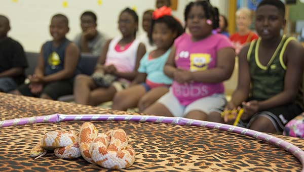 Children observe a snake slither on a table at the Lincoln-Lawrence-Franklin Regional Library on Thursday.