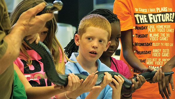Bryce Estes, 7,  gets a chance to hold one of the snakes. Vanderveneter, who spoke to the children at the library Thursday, works with the Mississippi Museum of Natural Science. He began studying snakes at a young age and has numerous scientific and popular publications and has been in charge of the Jackson Zoo Reptile Department.